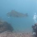 Manta Point & Karang Makasar, 28 March, 2012